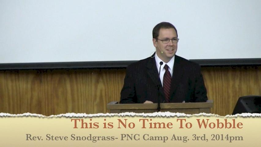 080314pncSnodgrass-poster